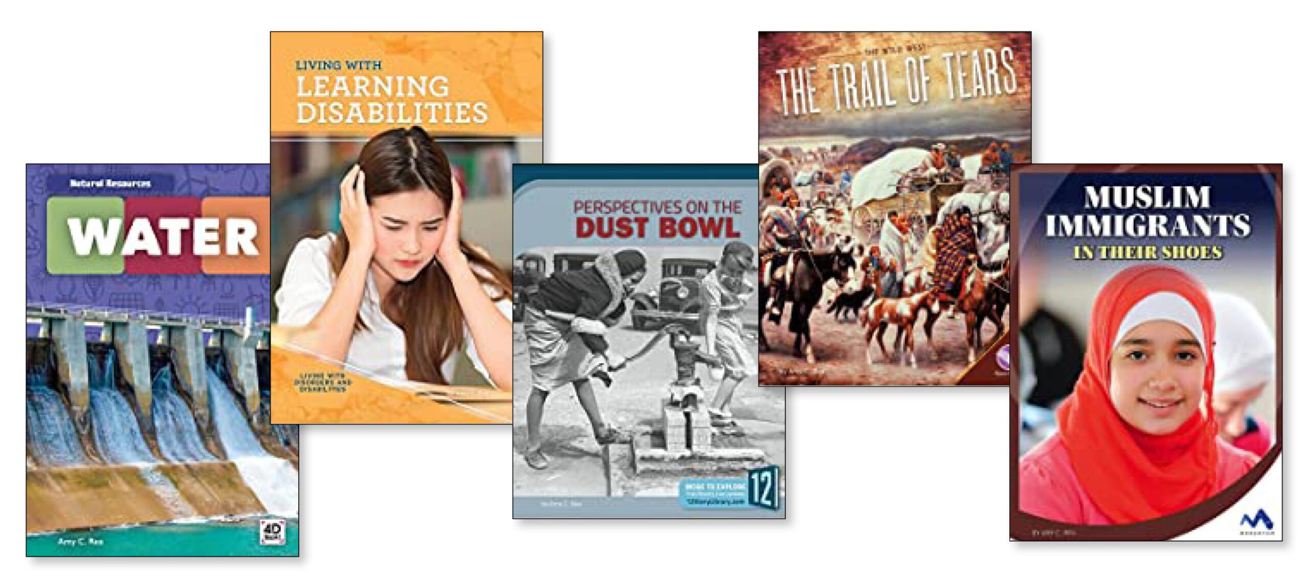 Image of various book covers on educational topics.